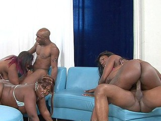 Decollecter, Kelly Starr, Ms. Moist, Ms. Marinate and Telicious offered up their thick asses for this incredible black on black gang team fuck with some fortunate monster jocks getting double blowjobs and pounding some pleasant cool booties!  Full of anal penetration and lustful fur pie fuckin', watch these luscious hos go wild!