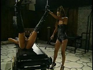 Do Not Forget Who Is The Dominatrix-bitch
